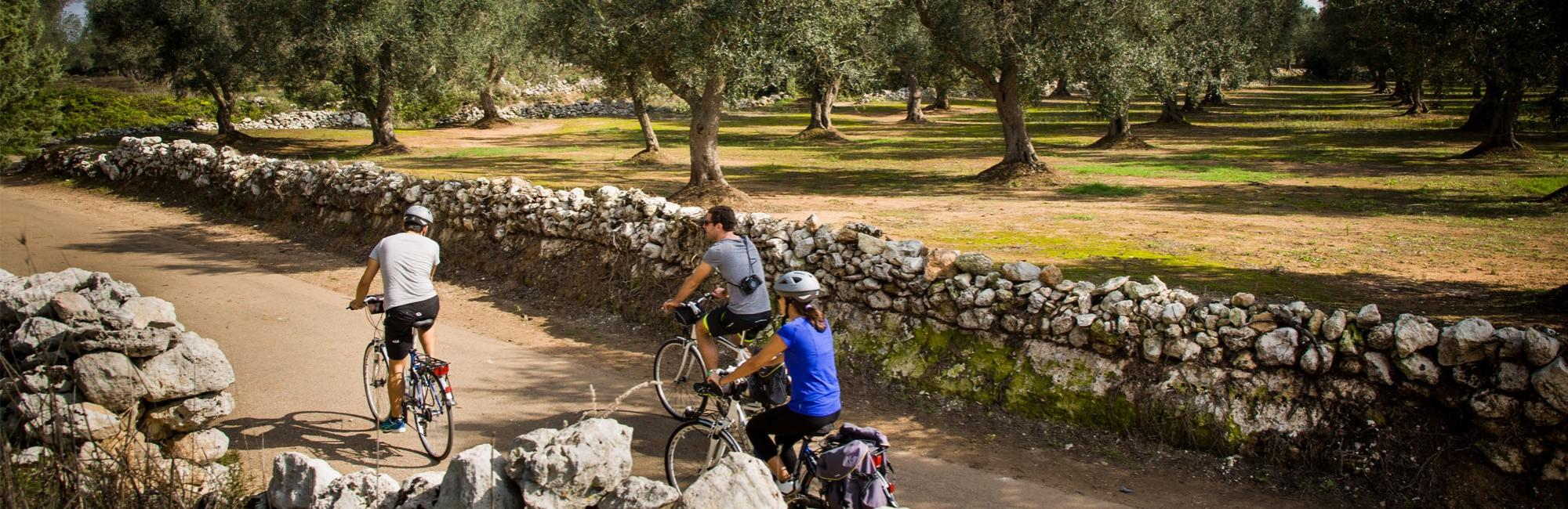 Cycling and walking holidays in Italy