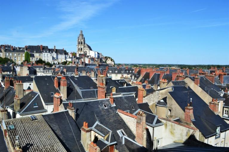 Blois roofs