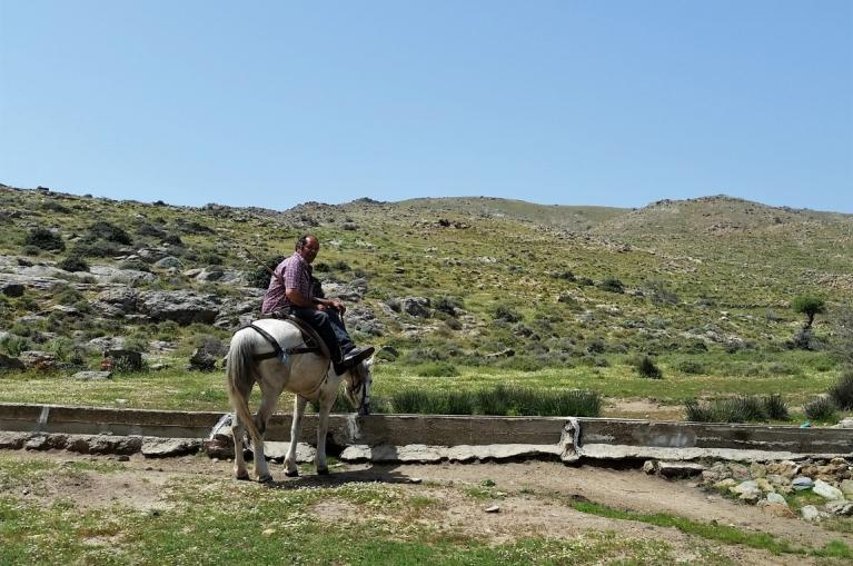 Man riding a horse in Evia