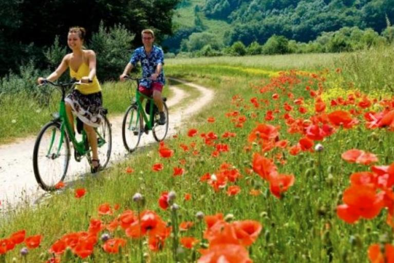 Cyclists in Val D'Orcia