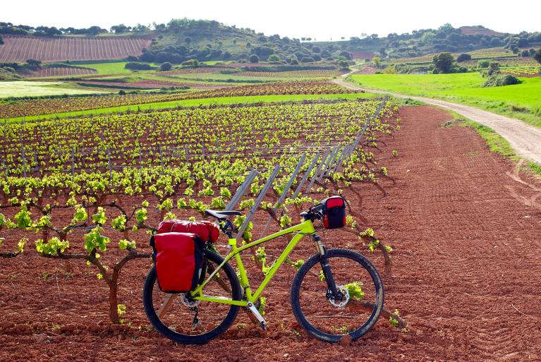 Bicycle among La Rioja vinyards