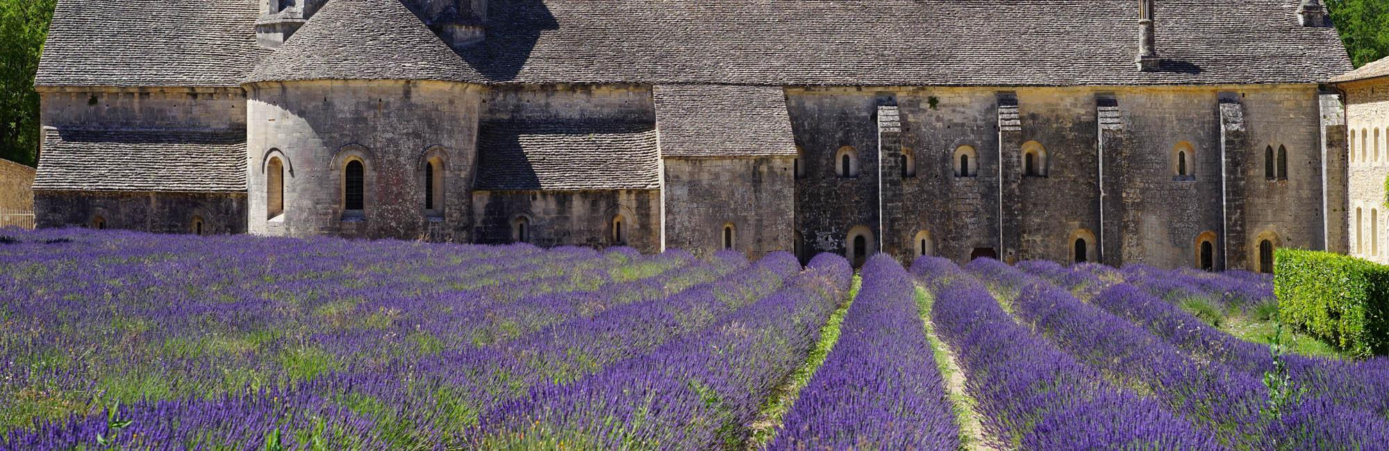 Walking holidays in France-La Provence Vaucluse
