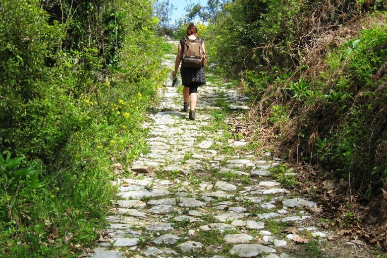 Pelion walking