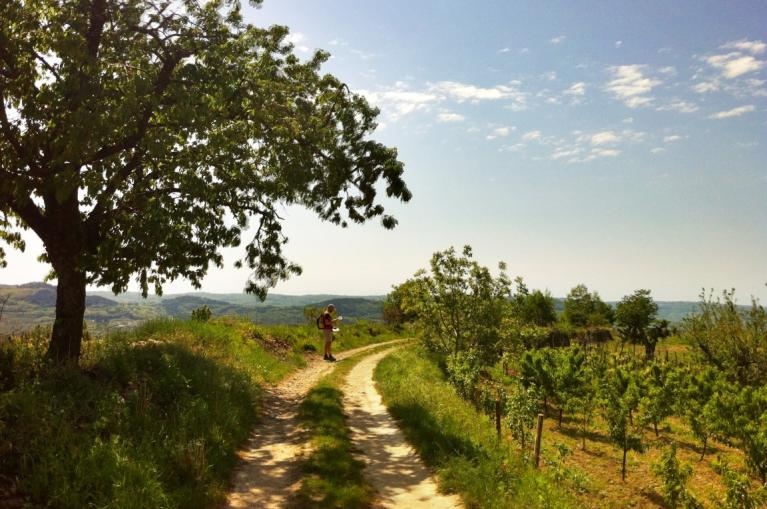 Istria walking trail