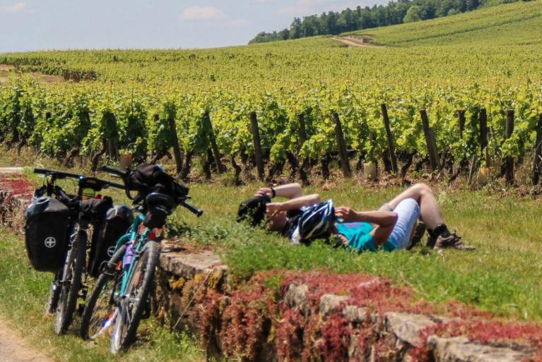 Cyclists lying next to vineyards