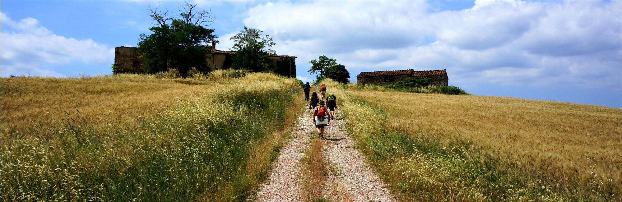 The best of Via Francigena