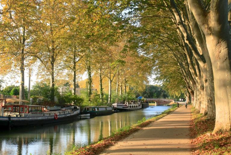 Canal du Midi cycling tour